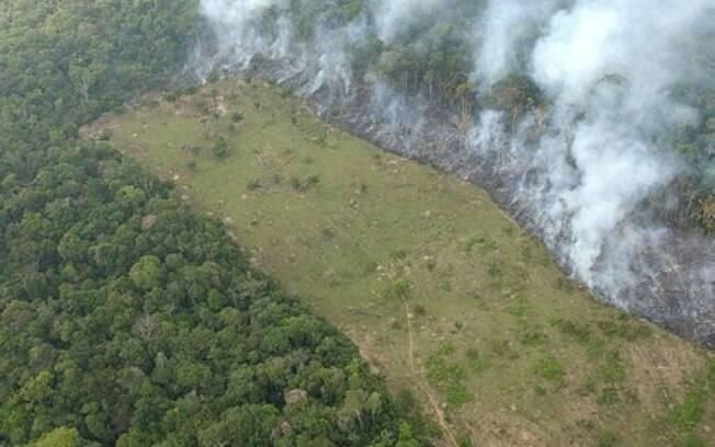 Amazônia sofre com mentalidade cega e destruidora, diz Papa