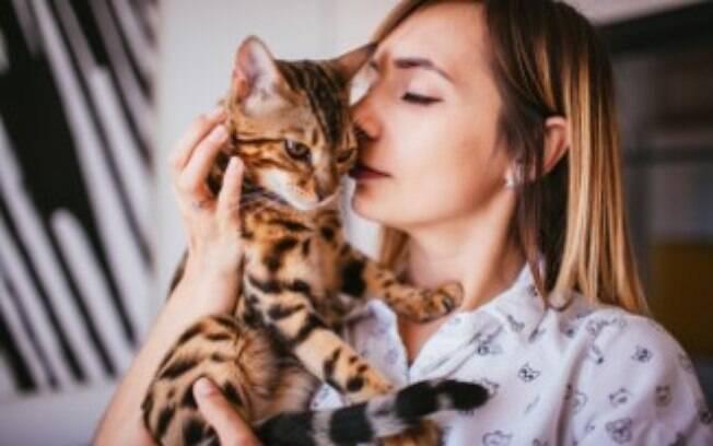 Os donos de gato precisam ficar atentos às doenças FIV e FeLV