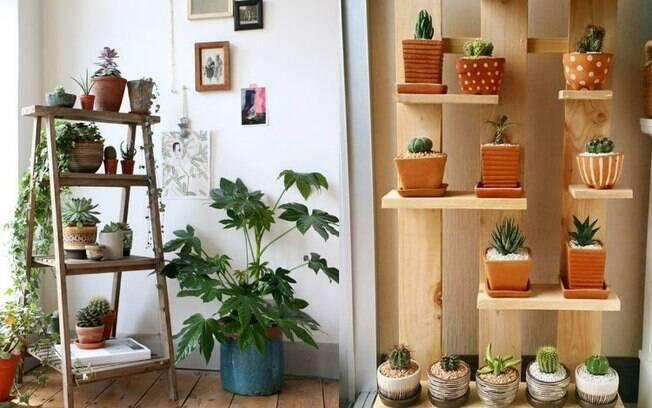 A prateleira de madeira é outra opção na hora de montar e estruturar um jardim vertical