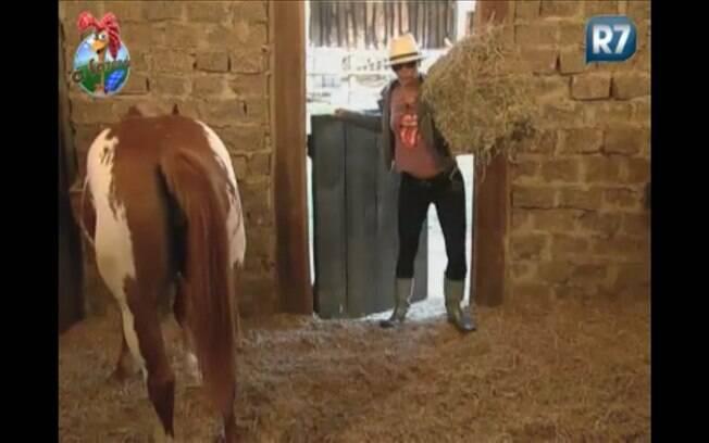 Anna Markun inicia cuidados com os cavalos