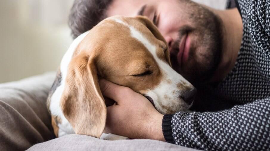 O tutor deve adequar o comportamento do cão para que ele receba o que quer, mas não tornar o pet totalmente dependente dele