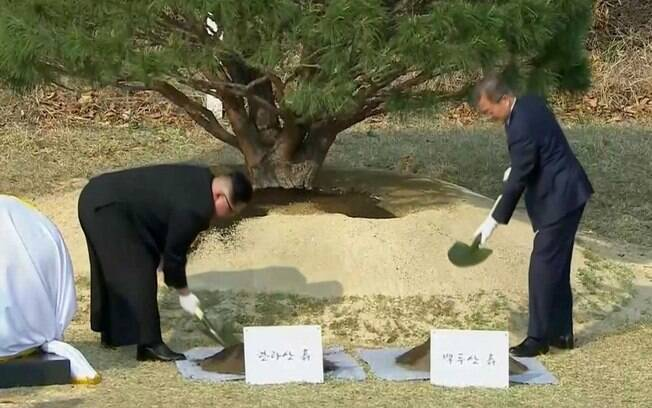 Kim Jong-un e Moon Jae-in plantaram uma árvore juntos nesta sexta-feira