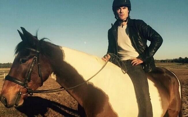 Iam Somehalder ganhou o cavalo de sua esposa, Nikki Reed