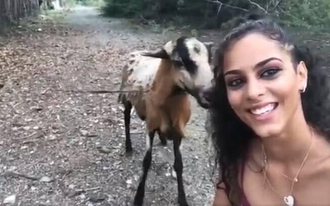 Em vídeo, mulher aparece sorrindo, enquanto bode tenta alcançá-la