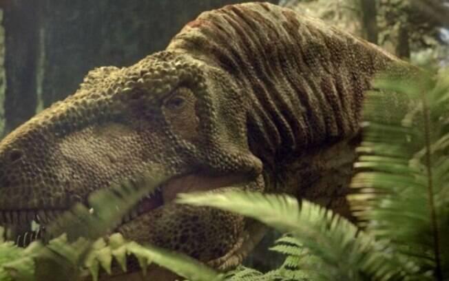 O Tiranossauro Rex viveu milhões de anos antes do Purussaurus, mas tinha antepassado como predador