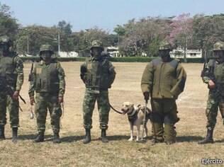 A equipe do sargento Beltrán pode levar um dia inteiro para desativar uma mina