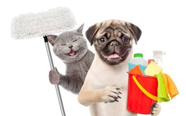 O álcool em gel comum não deve ser utilizado em animais de estimação
