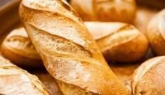Não abandone o carboidrato na dieta! Seu cérebro agradece
