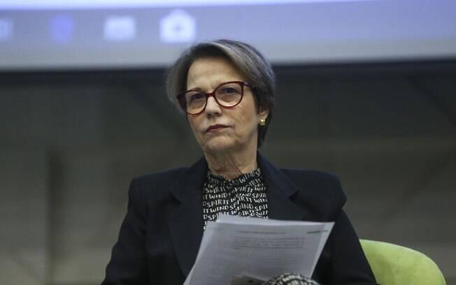 Ministra ressaltou os pontos positivos do setor no Brasil
