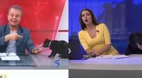 Gatinha invade estúdio durante telejornal e viraliza