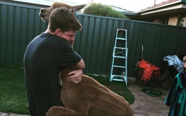 A alpaca Chewy recebe todo o amor do mundo e adora a nova vida que tem