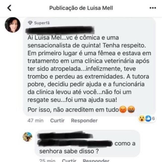 Resposta de suposta veterinária no post de Luisa Mell