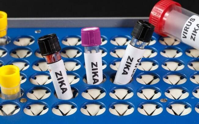 Zika, transmitido pelo Aedes aegypti, está associado à microcefalia e Síndrome de Guillain-Barré