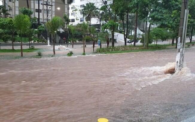 Chuvas causam alagamento e queda de rvore em Campinas