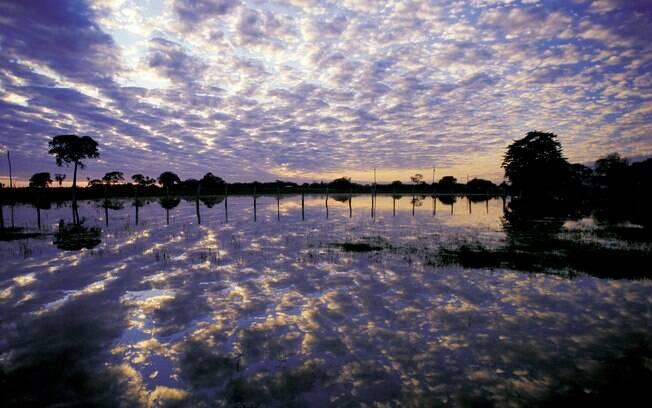 Abuse dos reflexos das águas e dos espelhos para fazer imagens inusitadas da viagem - Foto do Pantanal no período da cheia