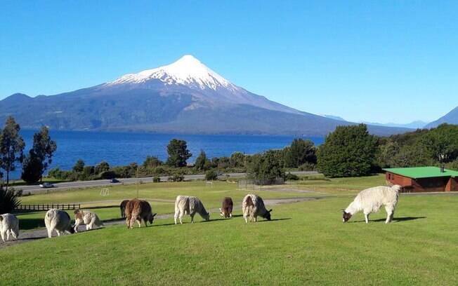 Roadtrip no Chile com o Nissan X-Trail conta com a parada em uma once