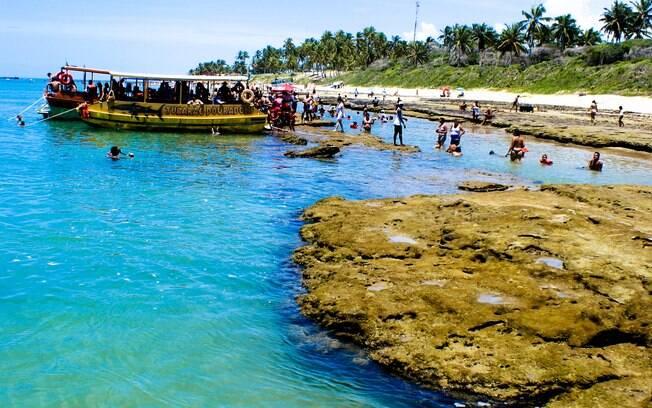 Praia do Francês é famosa por suas piscinas naturais