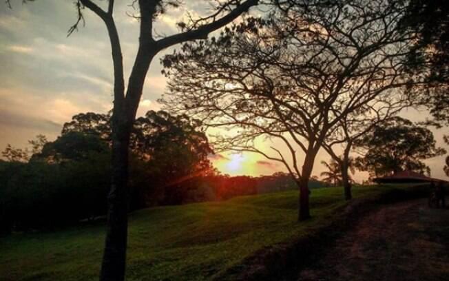 O Parque do Carmo é conhecido por suas árvores poéticas, um bom lugar para fazer um piquenique com o