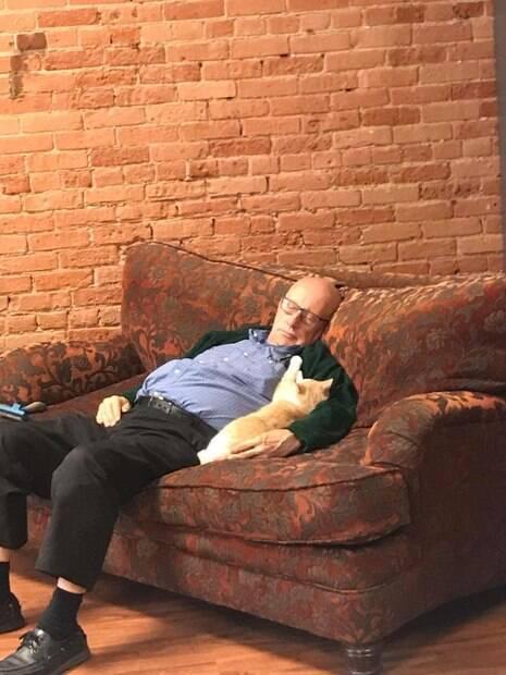 Voluntário visita abrigo todos os dias e adormece entre os gatoss