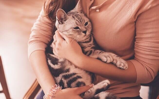 O seguro para animais pode trazer muitas vantagens para os donos