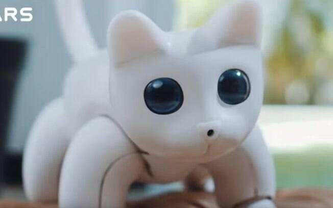 gato-robô