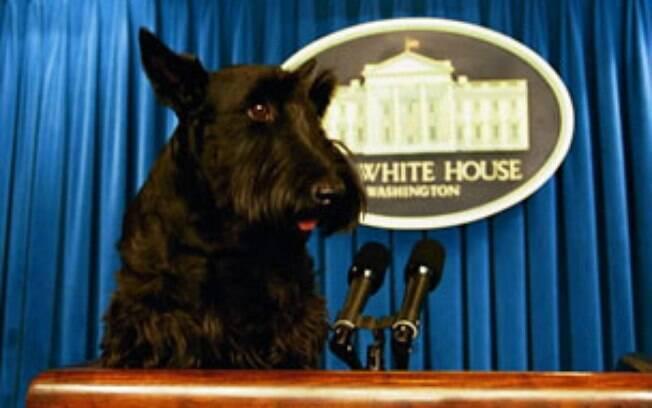 Barney, o cão de George w Bush, ganhou até um site oficial enquanto morou na Casa Branca