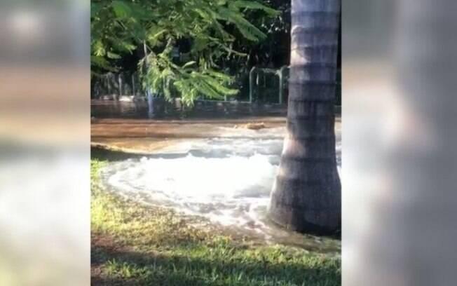 Rompimento de subadutora deixa 12 bairros de Campinas sem água