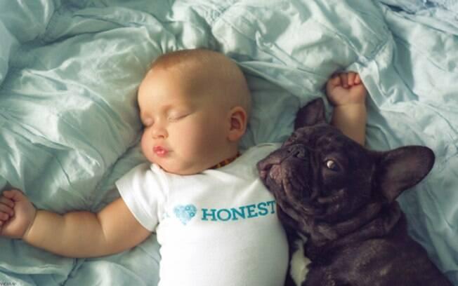 Bebê dormindo e cachorro orgulhoso tirando foto com o irmãozinho.
