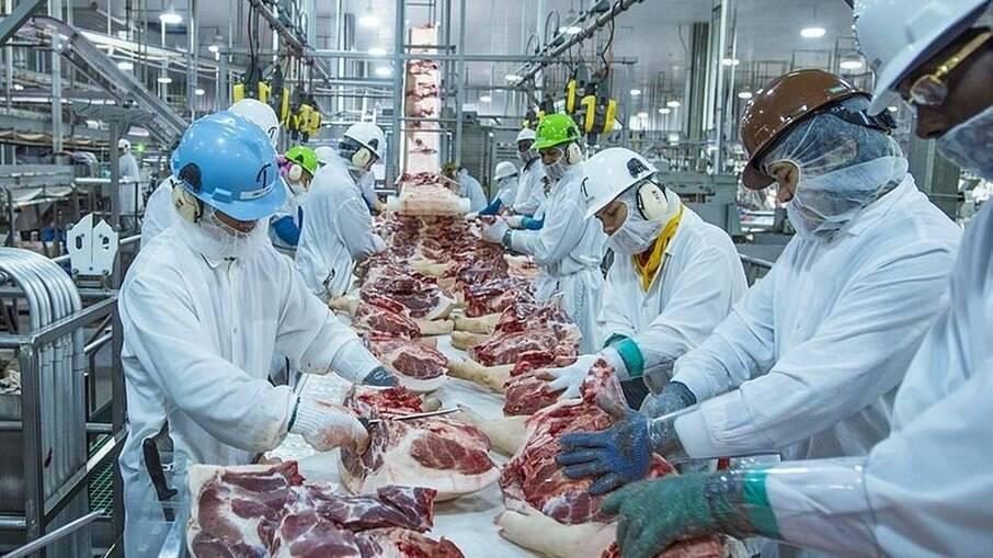 Os preços da arroba bovina têm alcançado patamares recordes ao redor do mundo, segundo o Imea.
