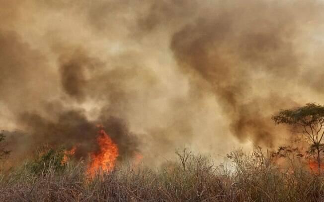 Incêndio atinge área verde de cinco hectares em Americana