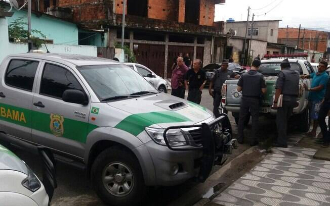 Operação da Polícia Militar Ambiental contou com apoio da Polícia Federal, do Ibama e do Departamento de Fauna  da SMA