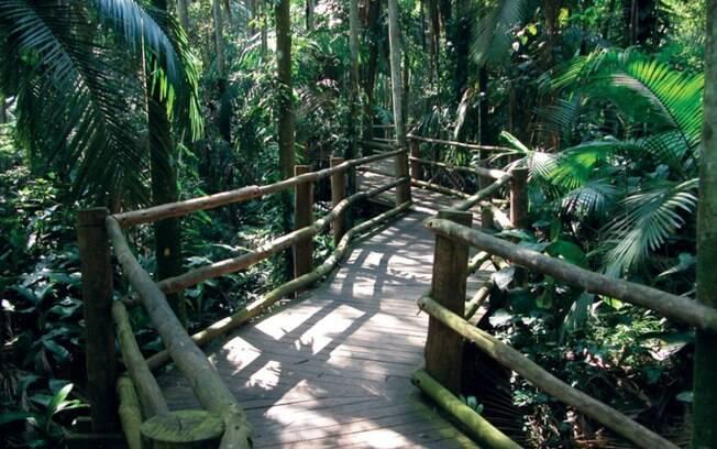 Parque Estadual Fontes do Ipiranga