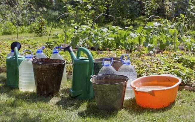Não erre: a água deve ser água armazenada em um recipiente fechado, limpo e sem luz