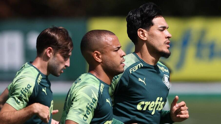 Palmeiras entra em campo nesta quarta contra o Defensa y Justicia