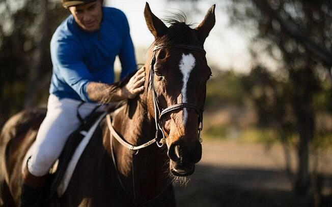 Corrida cavalo