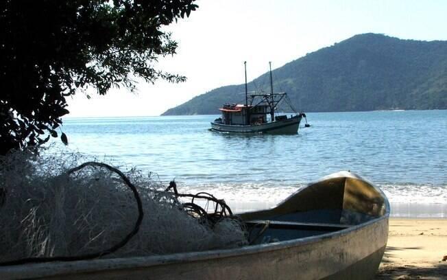 Saco do Mamanguá é uma boa opção para quem quer tranquilidade em Paraty