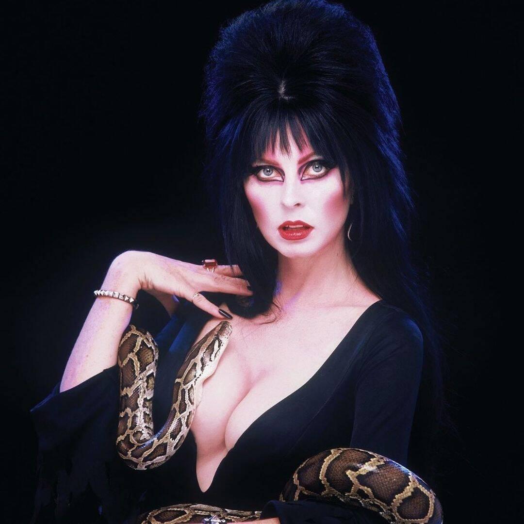 Elvira. Foto: Reprodução