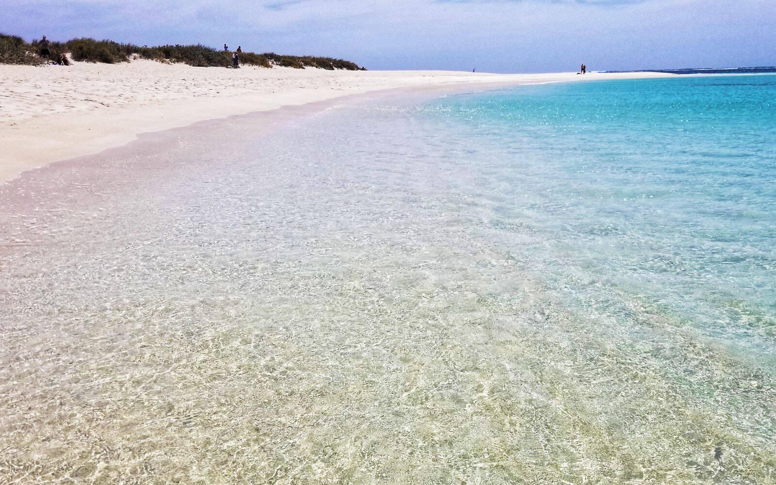 Turistas dizem que é normal que peixes nadem ao redor dos turistas no mar de Turquoise Bay. Foto: World Beach guide