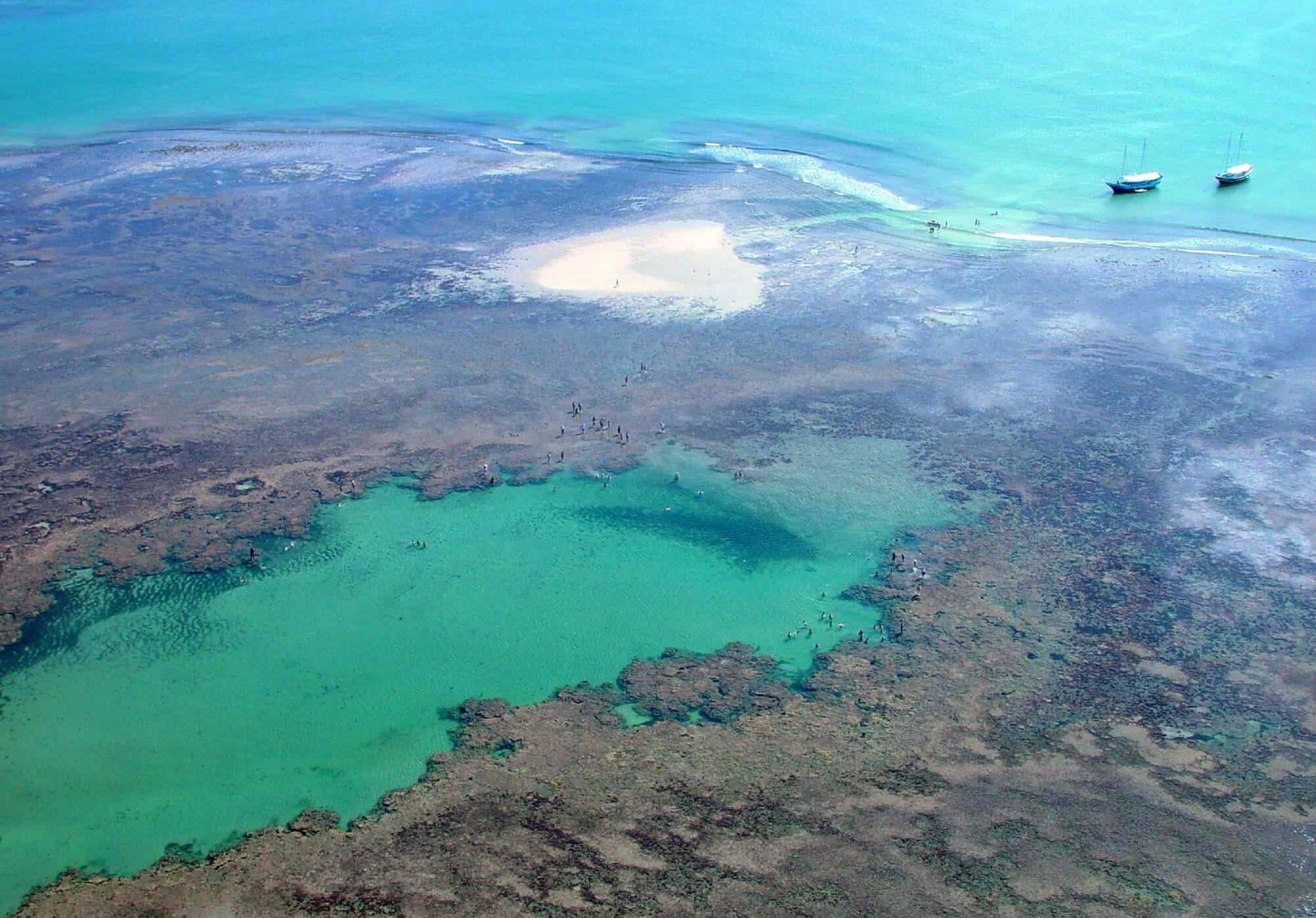 O Parque Marinho de Recife de Fora possui mais de 17 mil metros quadrados de corais e mais de 18 espécie deles. Foto: Quanto Custa Viajar
