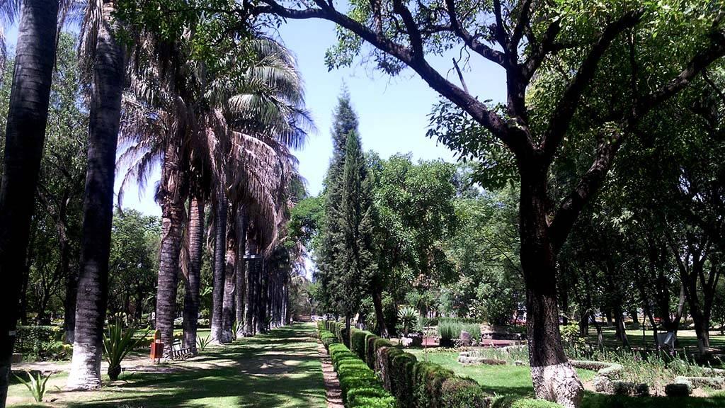 Jardim Botânico de Cochabamba. Foto: Reprodução. Foto: Reprodução