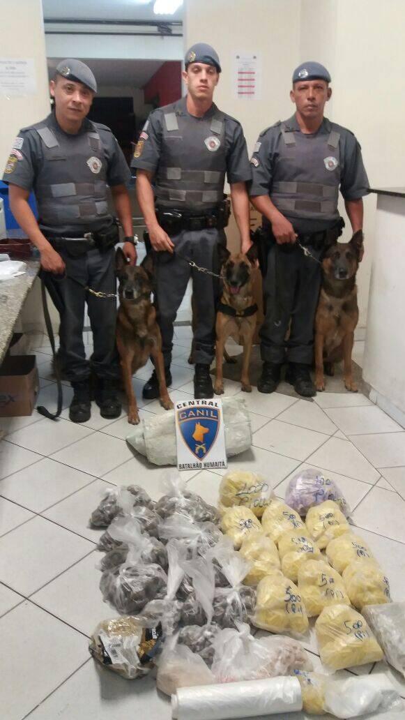 Os cães farejadores Euro,Cloe e Anúbis participaram da operação na comunidade do Piolho. Foto: Divulgação/Polícia Militar