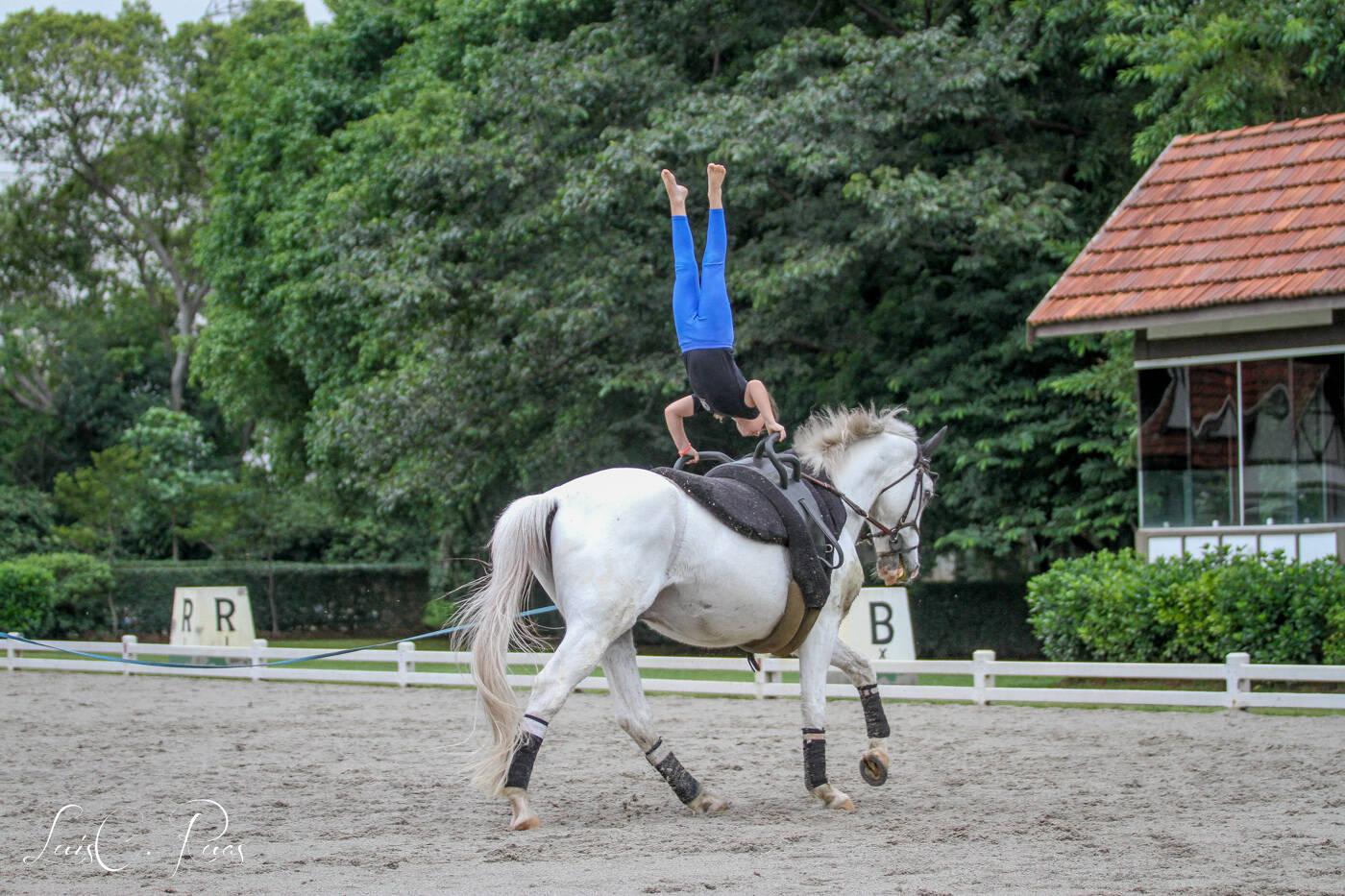 O volteio exige equilíbrio em manobras especiais em cima do cavalo. Foto: Divulgação/Hípica Paulista