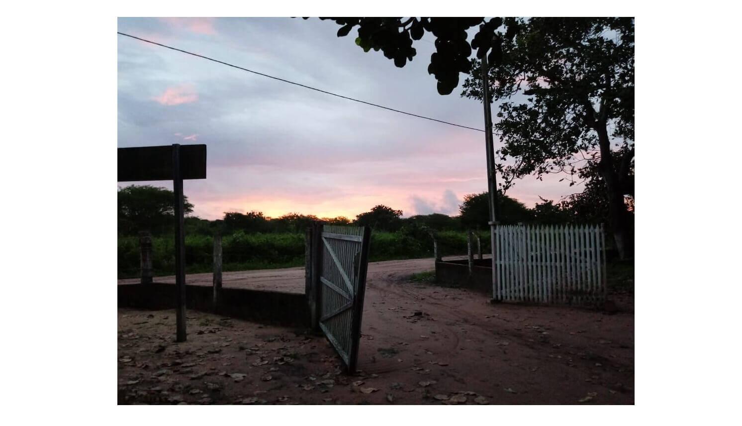 As porteiras estão abertas, mas não é possível sair, por Giselle da Cunha Batista. Foto: Giselle da Cunha Batista