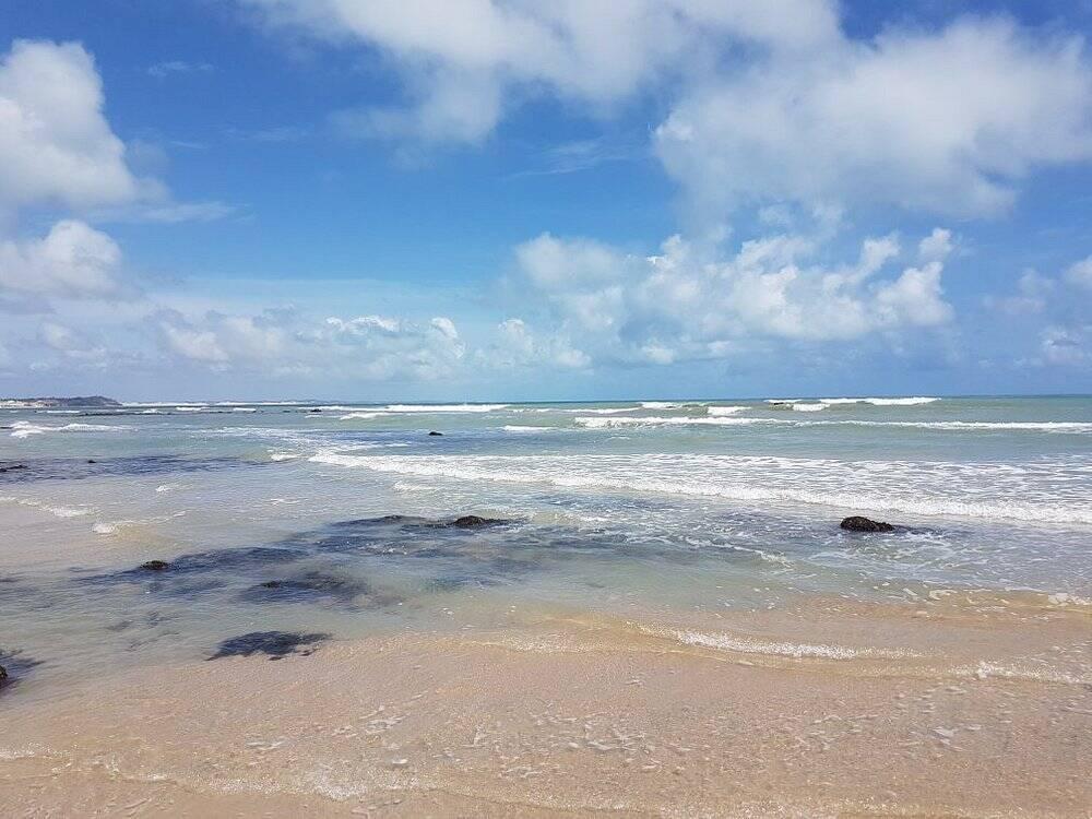 Baía dos Golfinhos está localizada no Rio Grande do Norte. Foto: TripAdvisor