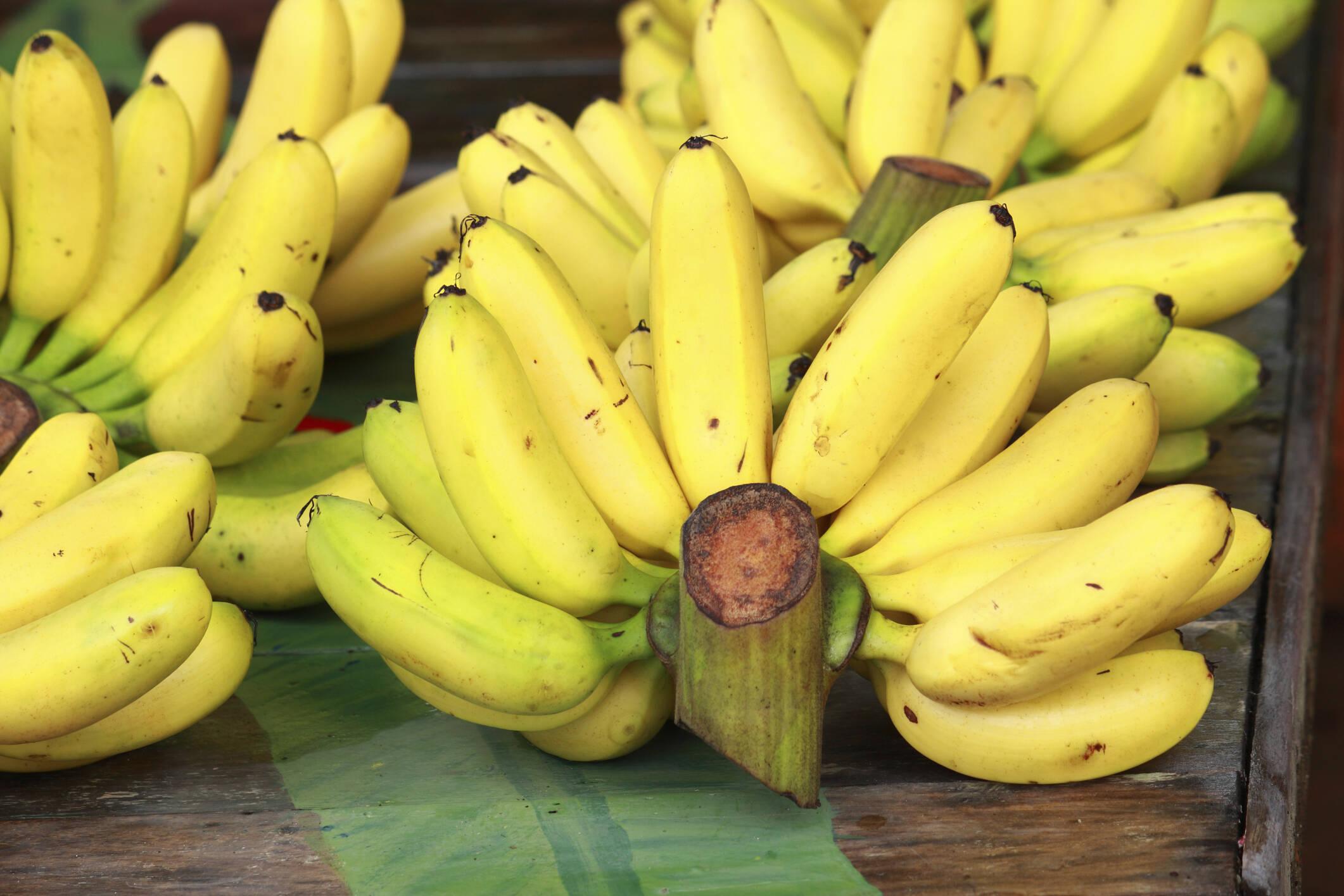 Bananas: possuem potássio e sódio e diminuem as câimbras, cansaço excessivo e as dores musculares. Foto: Getty Images