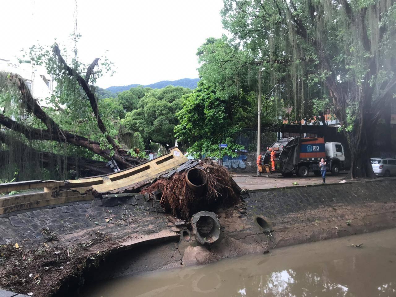 Queda de árvore no Leblon causa bloqueio de via no Rio de Janeiro; 170 árvores caíram. Foto: Divulgação/Centro de Operações Rio
