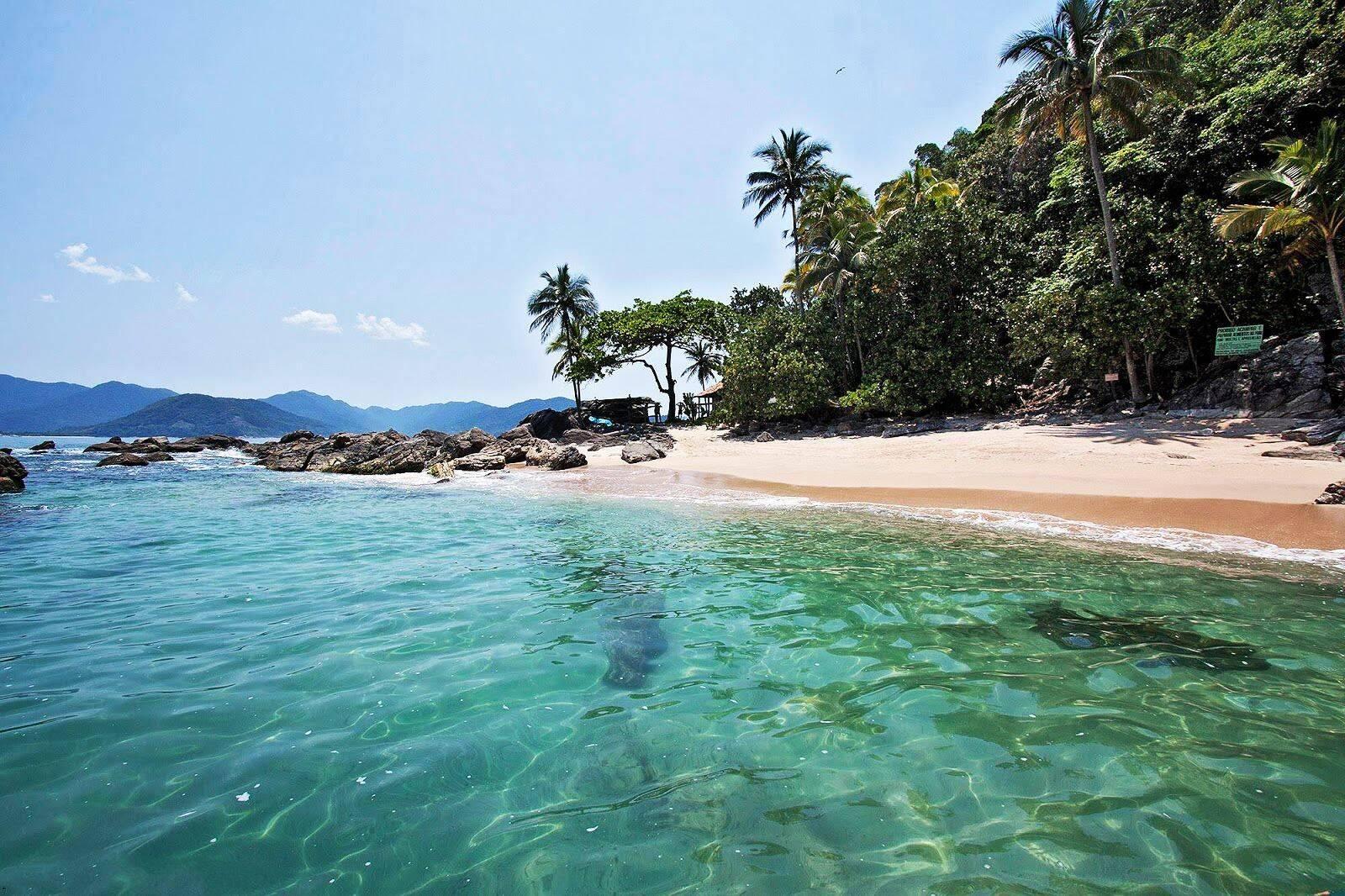 A Ilha das Couves é muito buscada por quem curte mergulho. Foto: Reprodução/Pinterest