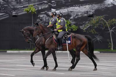 Cavalaria PM de São Paulo realiza o policiamento de áreas com grande aglomeração de pessoas. Foto: Divulgação/Polícia Militar