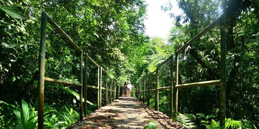 A trilha d'água tem dificuldade média e tem duração de três horas. Foto: Reprodução/Renata Brito