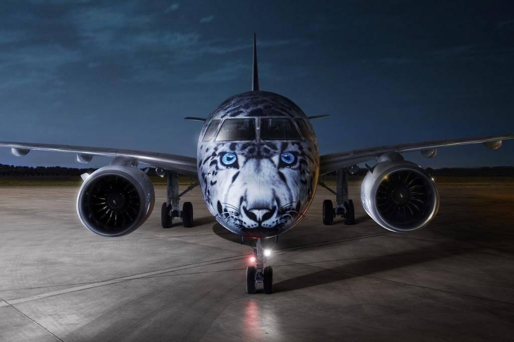 E190-E2, inspirado nas criações da Embraer, foi criado pela Air Astana, do Cazaquistão, e apelou pela preservação do animal. Foto: Divulgação